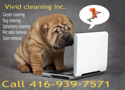 Carpet and Upholstery cleaning Toronto / Truck mounted steam cleaning