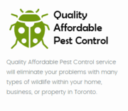 Quality Affordable Pest Control